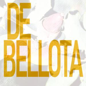 Comprar Paleta Ibérica de Bellota
