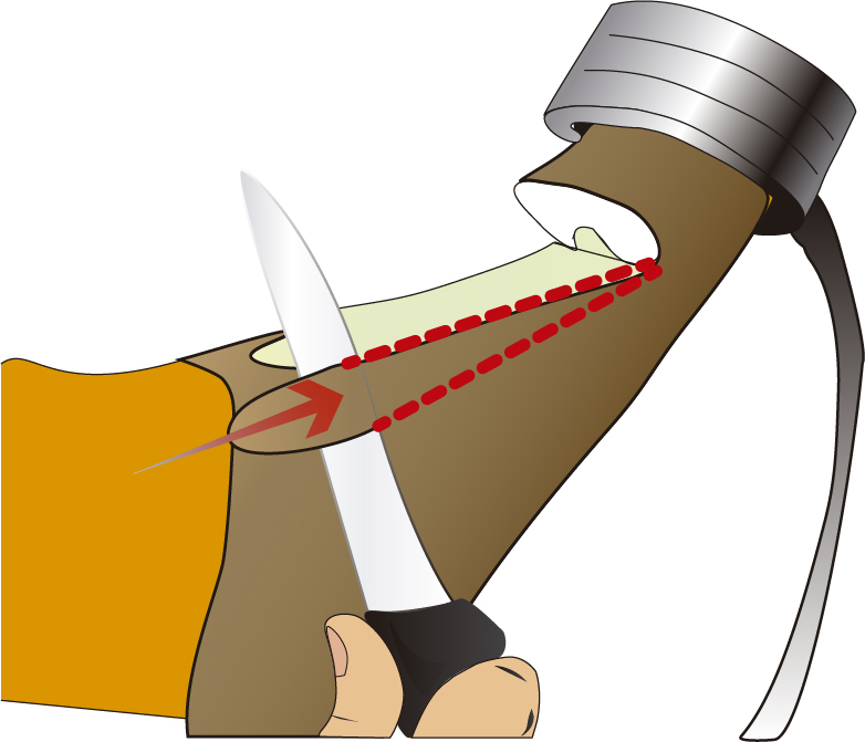 limpiar los laterales de cuero